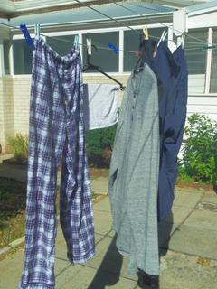 20161010 洗濯物.jpg